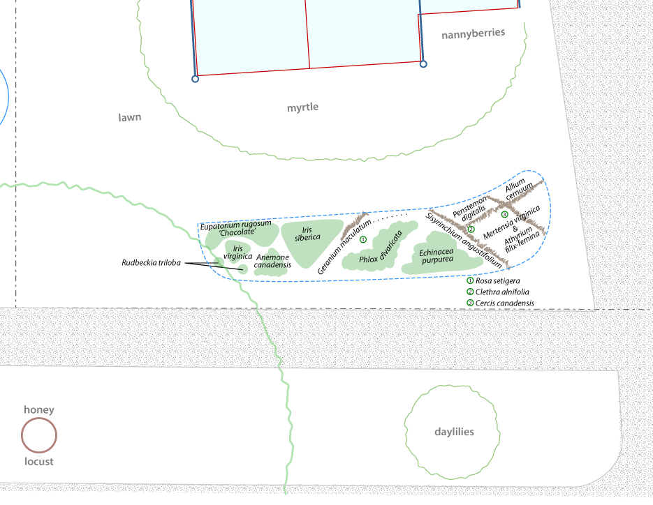 Site plan showing rain garden layout in relation to front of house, sidewalk, and road.